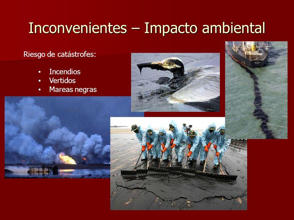 Inconvenientes – Impacto ambiental