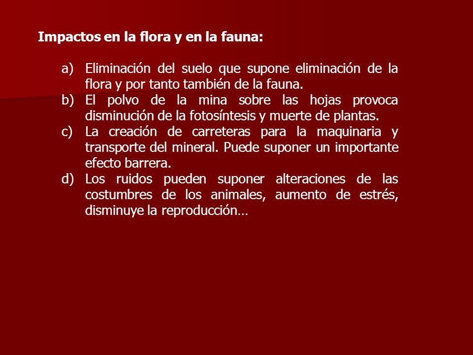 Impactos en la flora y en la fauna: