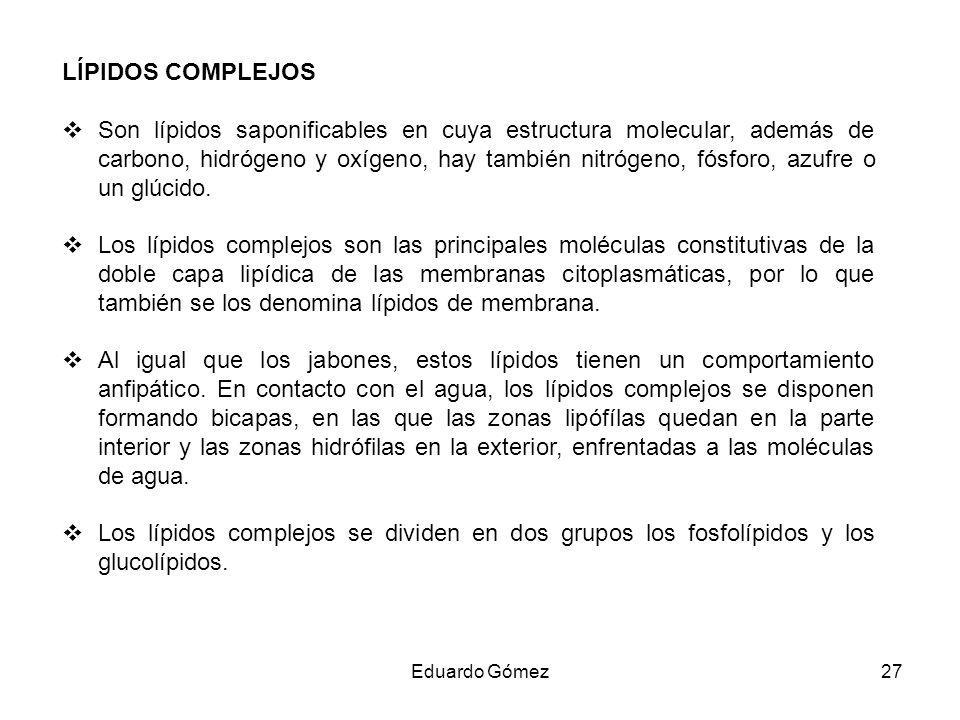 LÍPIDOS COMPLEJOS