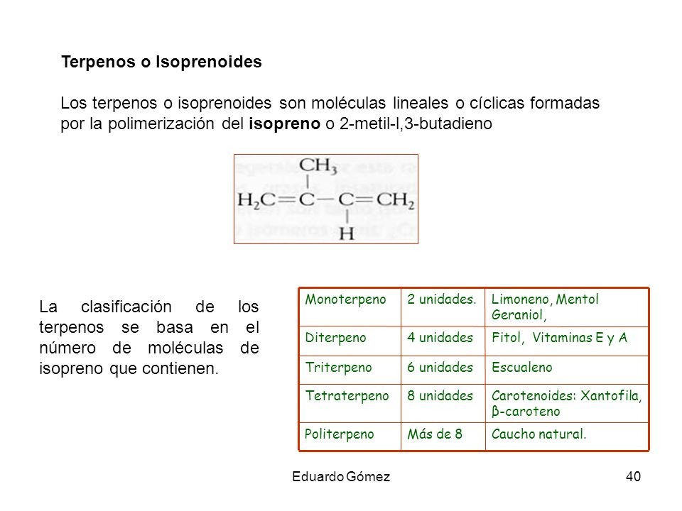 Terpenos o Isoprenoides