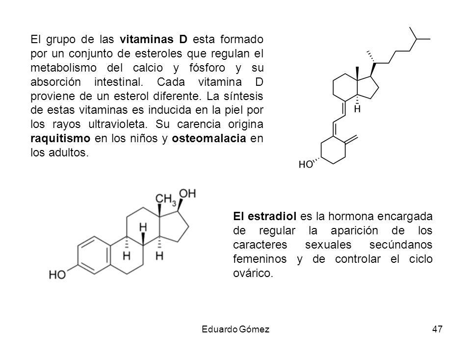 El grupo de las vitaminas D esta formado por un conjunto de esteroles que regulan el metabolismo del calcio y fósforo y su absorción intestinal. Cada vitamina D proviene de un esterol diferente. La síntesis de estas vitaminas es inducida en la piel por los rayos ultravioleta. Su carencia origina raquitismo en los niños y osteomalacia en los adultos.
