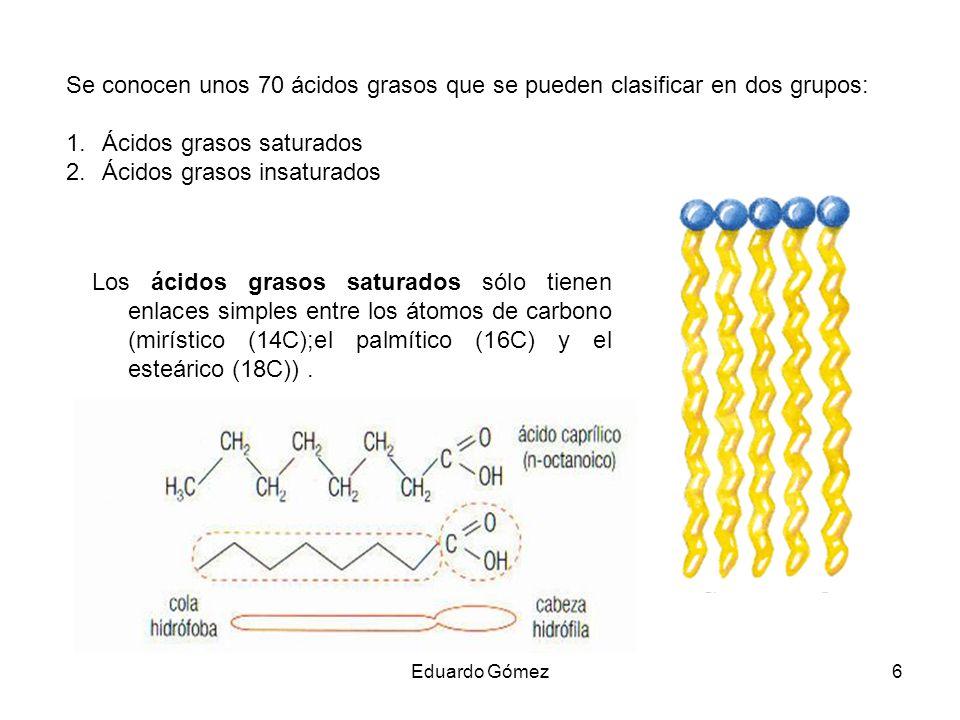 Ácidos grasos saturados Ácidos grasos insaturados