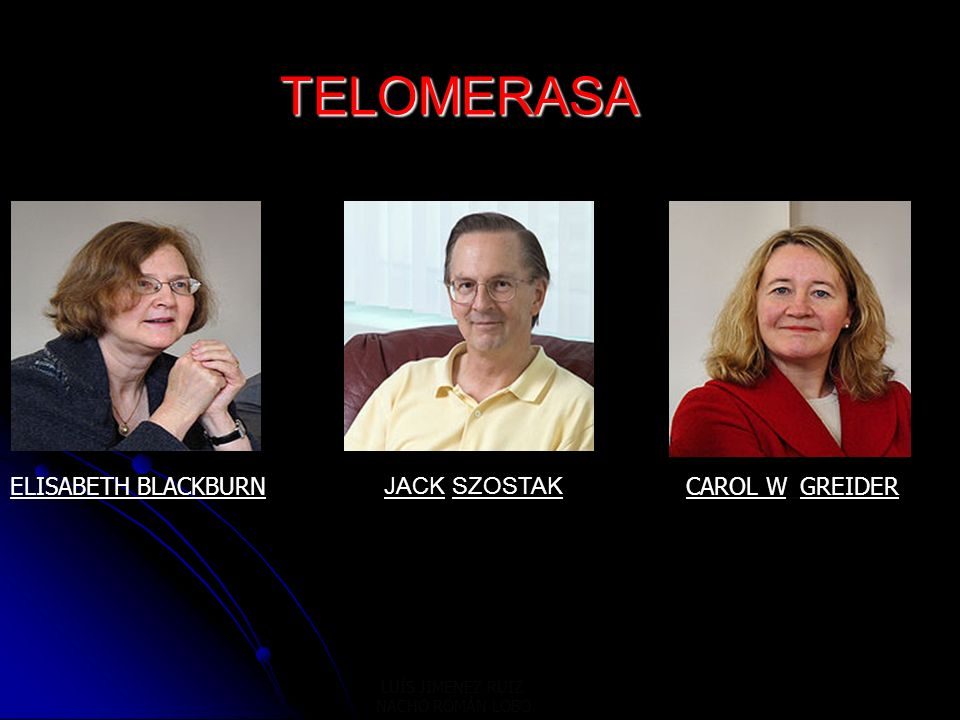 TELOMERASA ELISABETH BLACKBURN JACK SZOSTAK CAROL W. GREIDER
