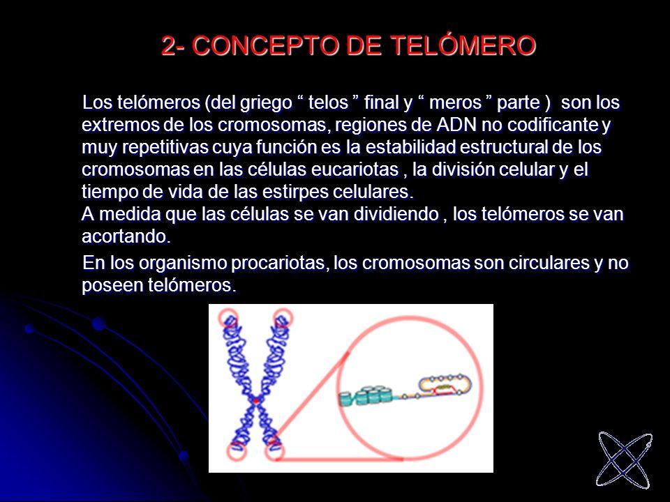 2- CONCEPTO DE TELÓMERO