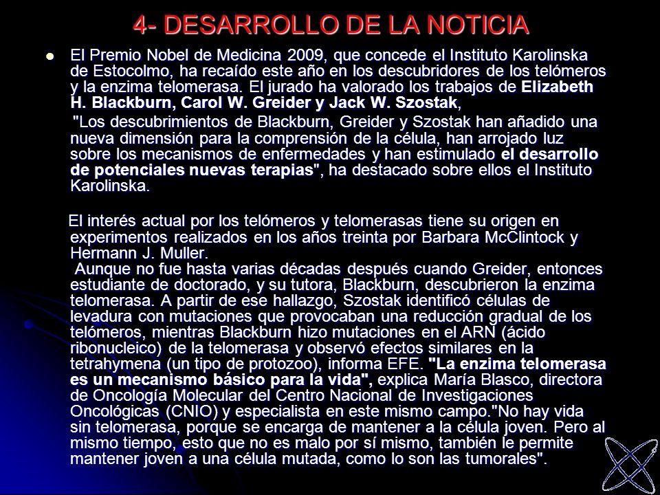 4- DESARROLLO DE LA NOTICIA