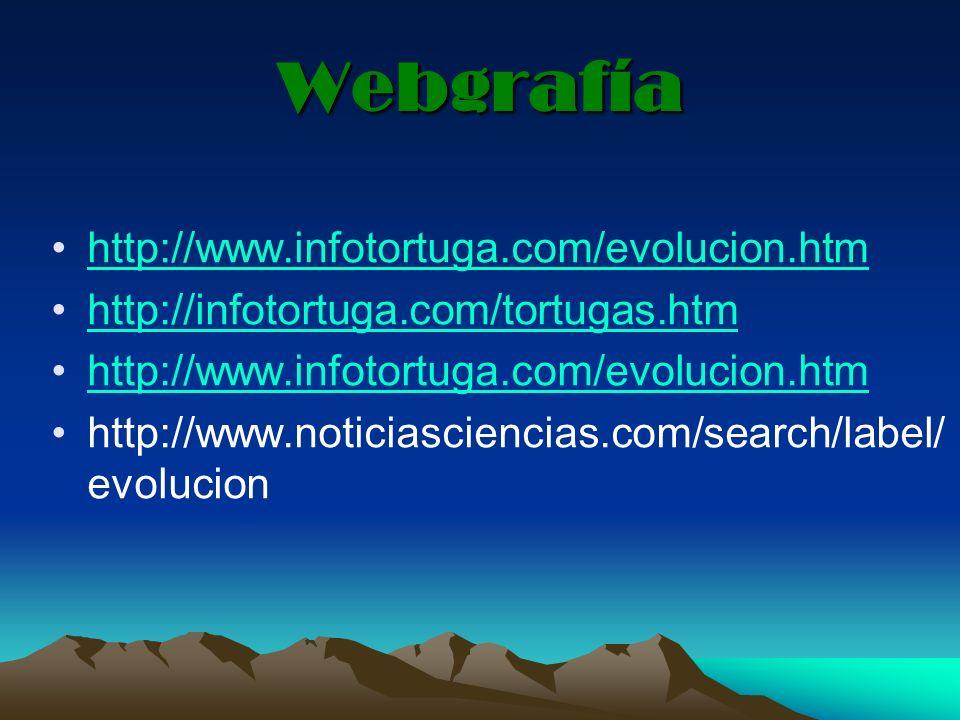 Webgrafía http://www.infotortuga.com/evolucion.htm