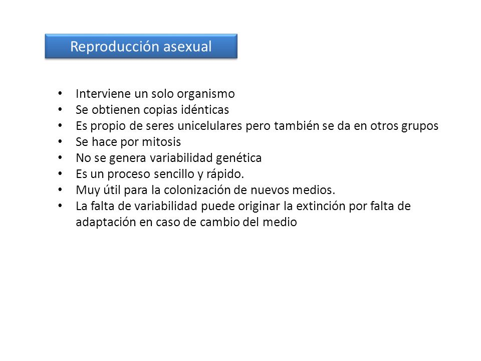Reproducción asexual Interviene un solo organismo