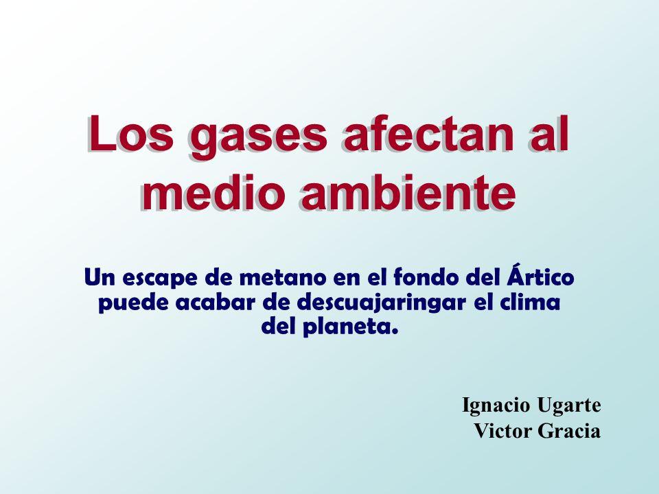 Los gases afectan al medio ambiente