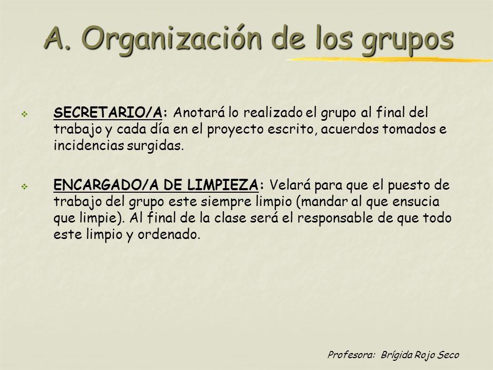 A. Organización de los grupos
