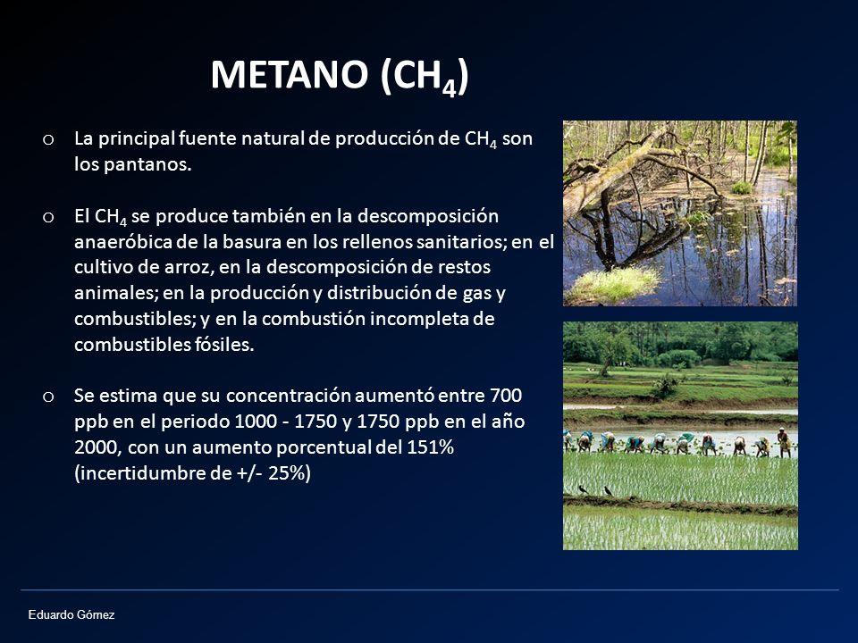 METANO (CH4) La principal fuente natural de producción de CH4 son los pantanos.