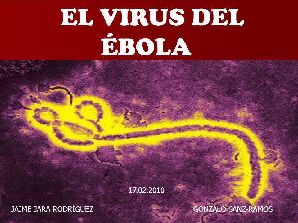 EL VIRUS DEL ÉBOLA 17.02.2010.