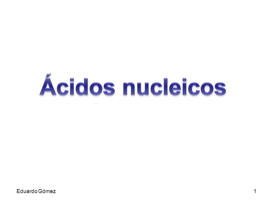 Ácidos nucleicos Eduardo Gómez