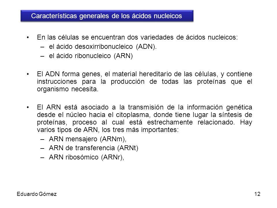 Características generales de los ácidos nucleicos