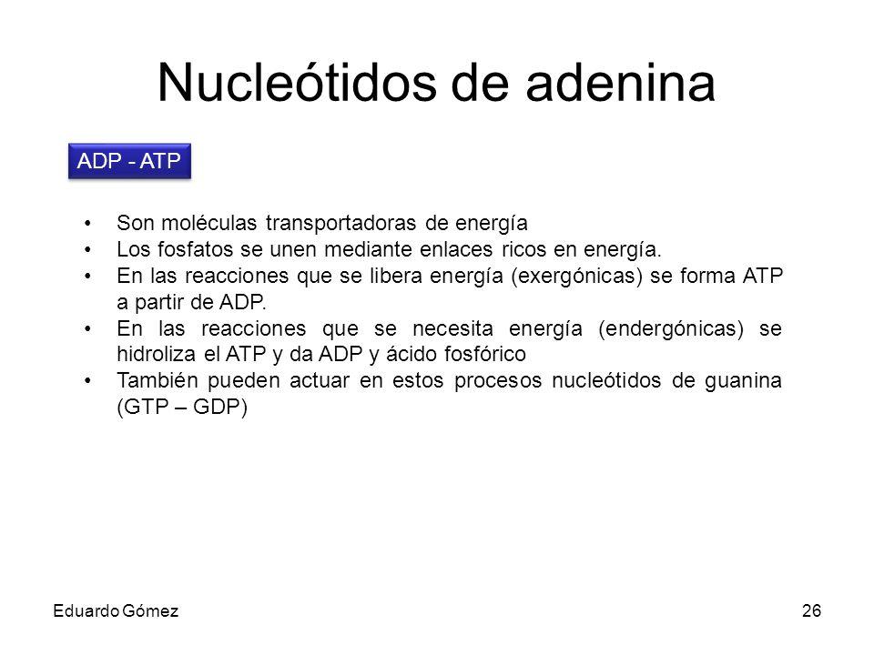 Nucleótidos de adenina