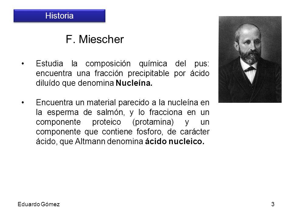 Historia F. Miescher. Estudia la composición química del pus: encuentra una fracción precipitable por ácido diluído que denomina Nucleína.