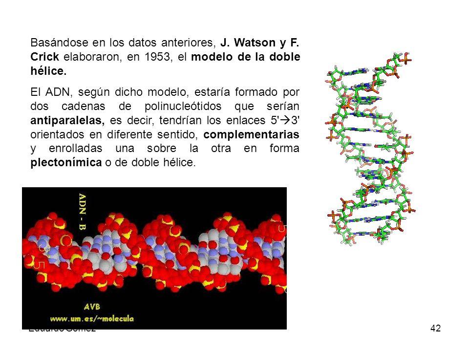 Basándose en los datos anteriores, J. Watson y F
