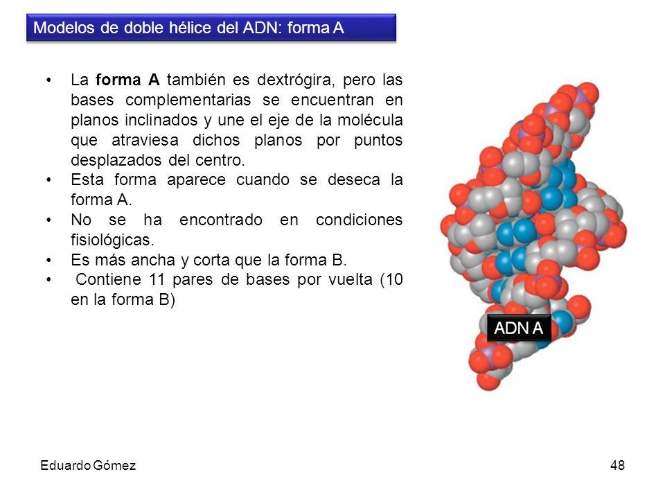 Modelos de doble hélice del ADN: forma A
