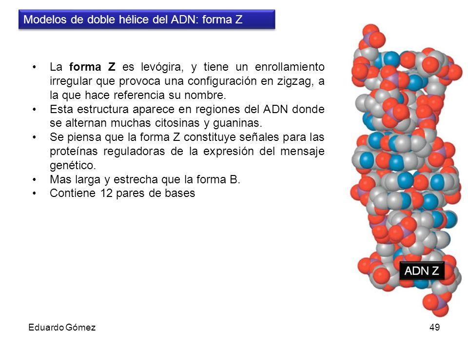 Modelos de doble hélice del ADN: forma Z