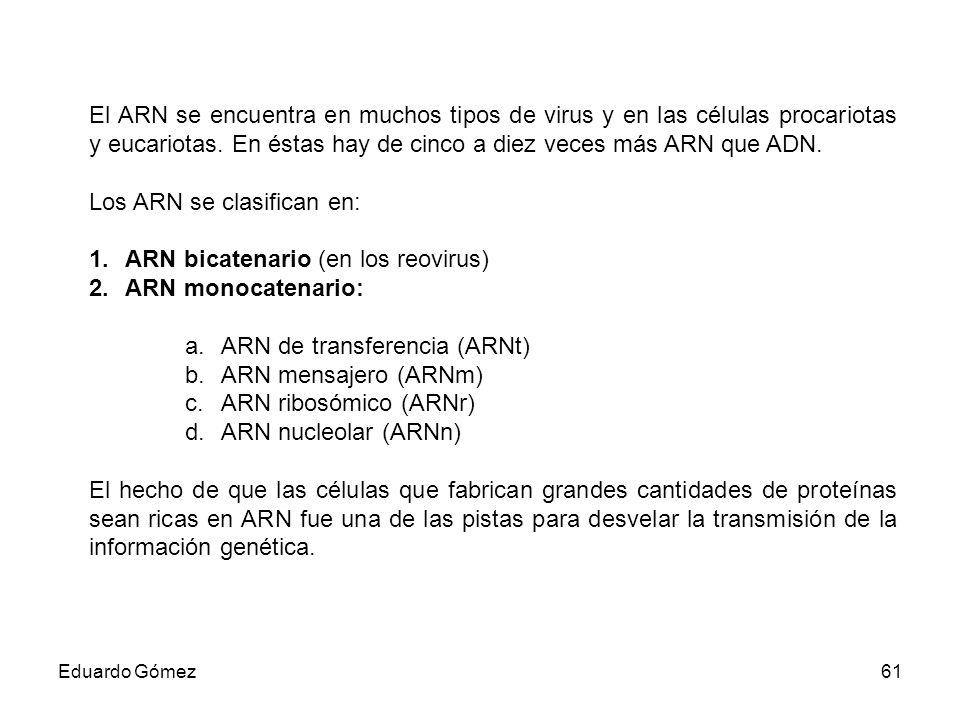Los ARN se clasifican en: ARN bicatenario (en los reovirus)