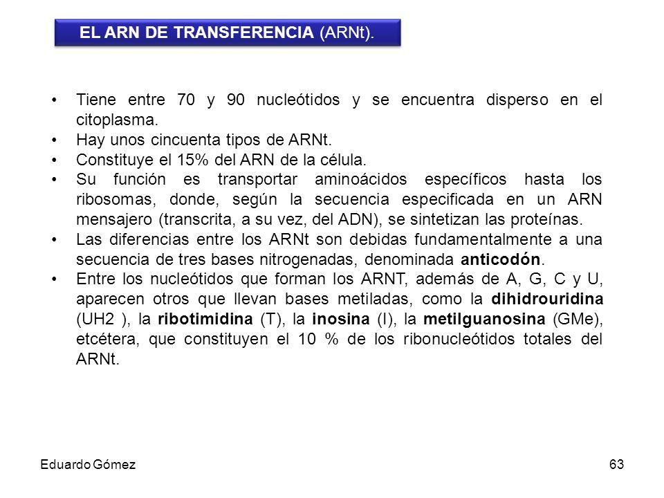 EL ARN DE TRANSFERENCIA (ARNt).