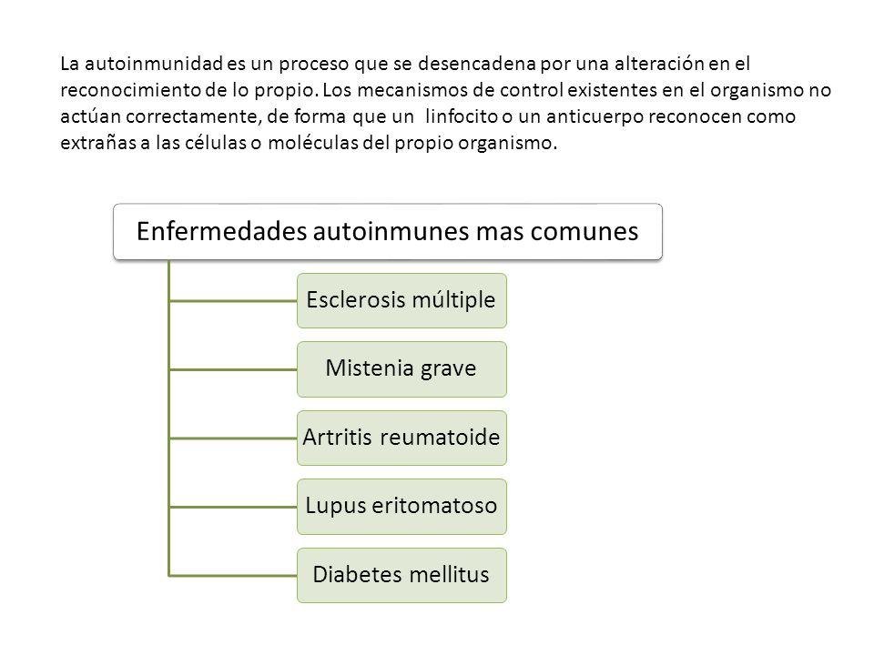 Enfermedades autoinmunes mas comunes