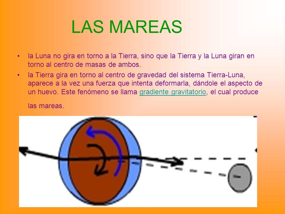 LAS MAREAS la Luna no gira en torno a la Tierra, sino que la Tierra y la Luna giran en torno al centro de masas de ambos.