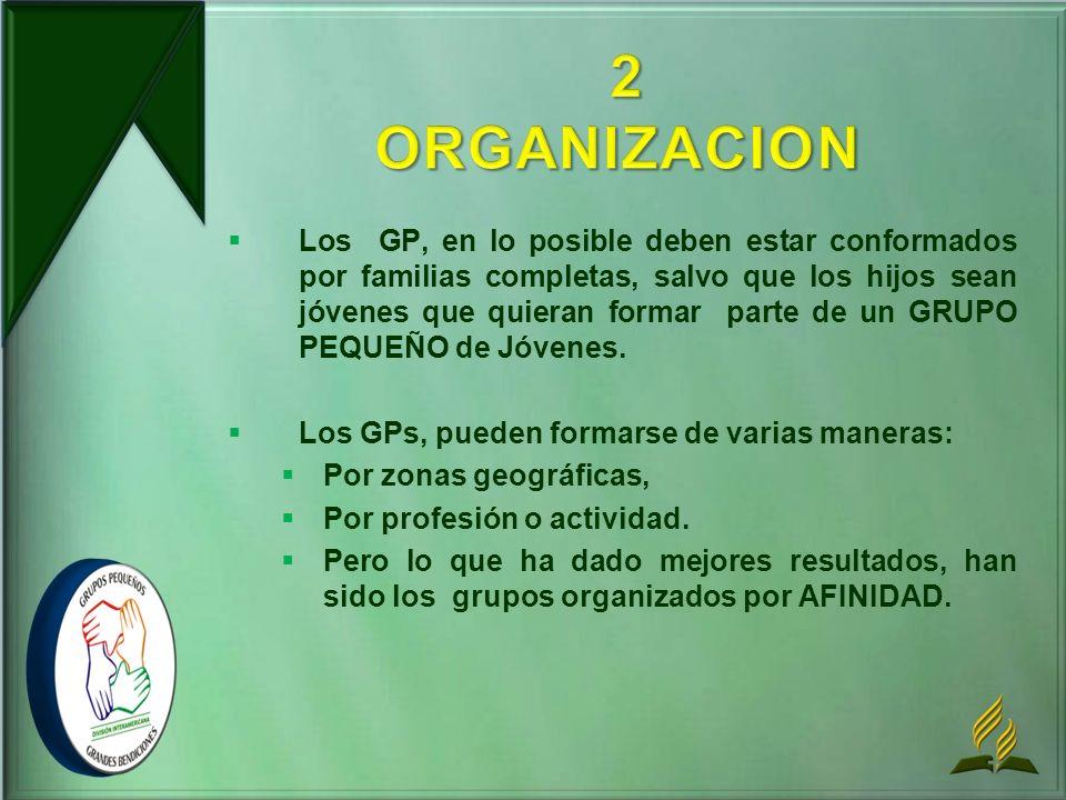 2 ORGANIZACION