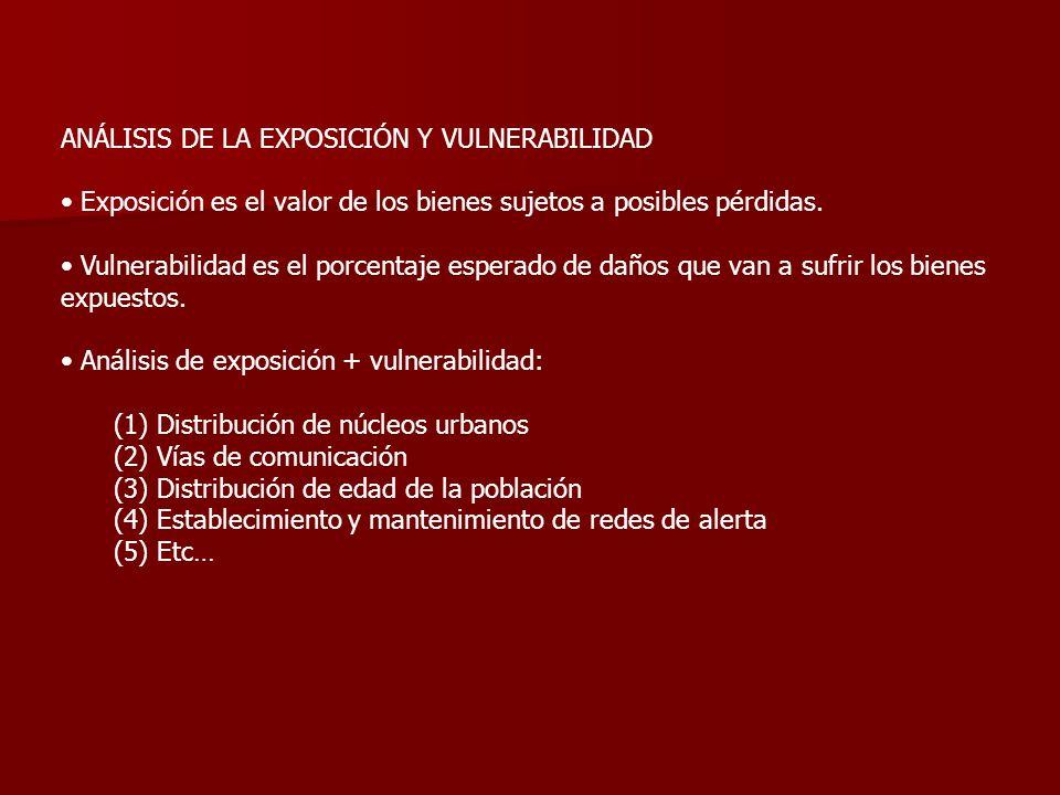 ANÁLISIS DE LA EXPOSICIÓN Y VULNERABILIDAD