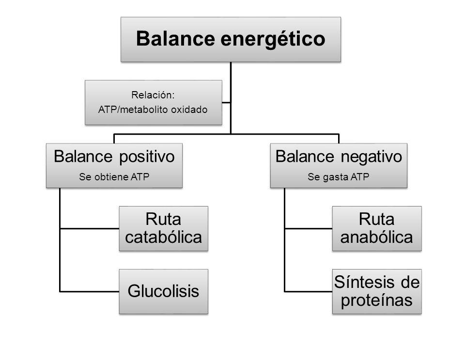ATP/metabolito oxidado