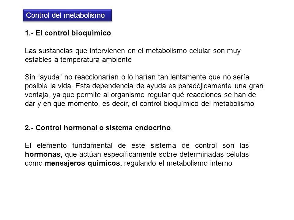 Control del metabolismo
