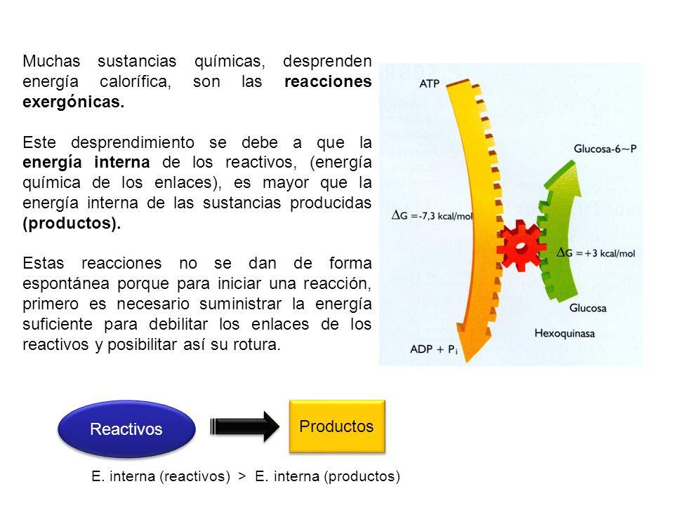 Muchas sustancias químicas, desprenden energía calorífica, son las reacciones exergónicas.