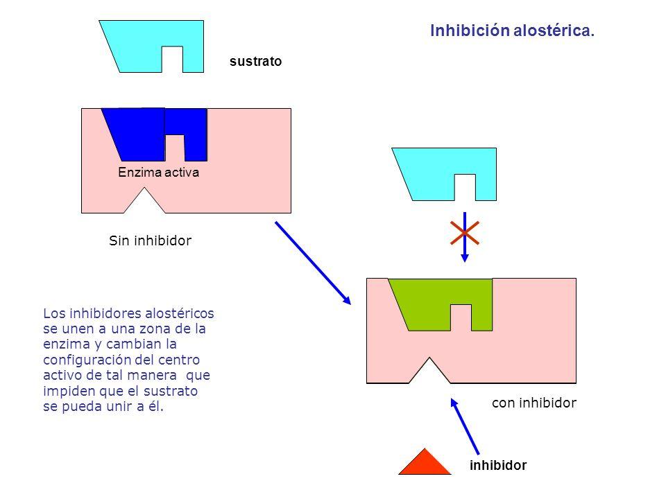 Inhibición alostérica.