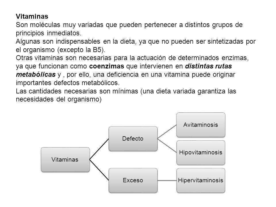 Vitaminas Son moléculas muy variadas que pueden pertenecer a distintos grupos de principios inmediatos.