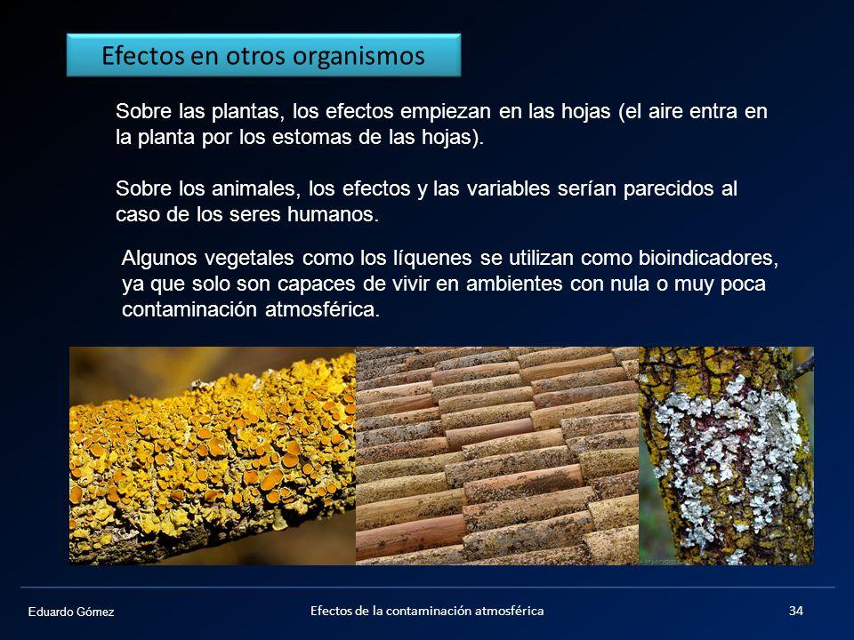 Efectos en otros organismos