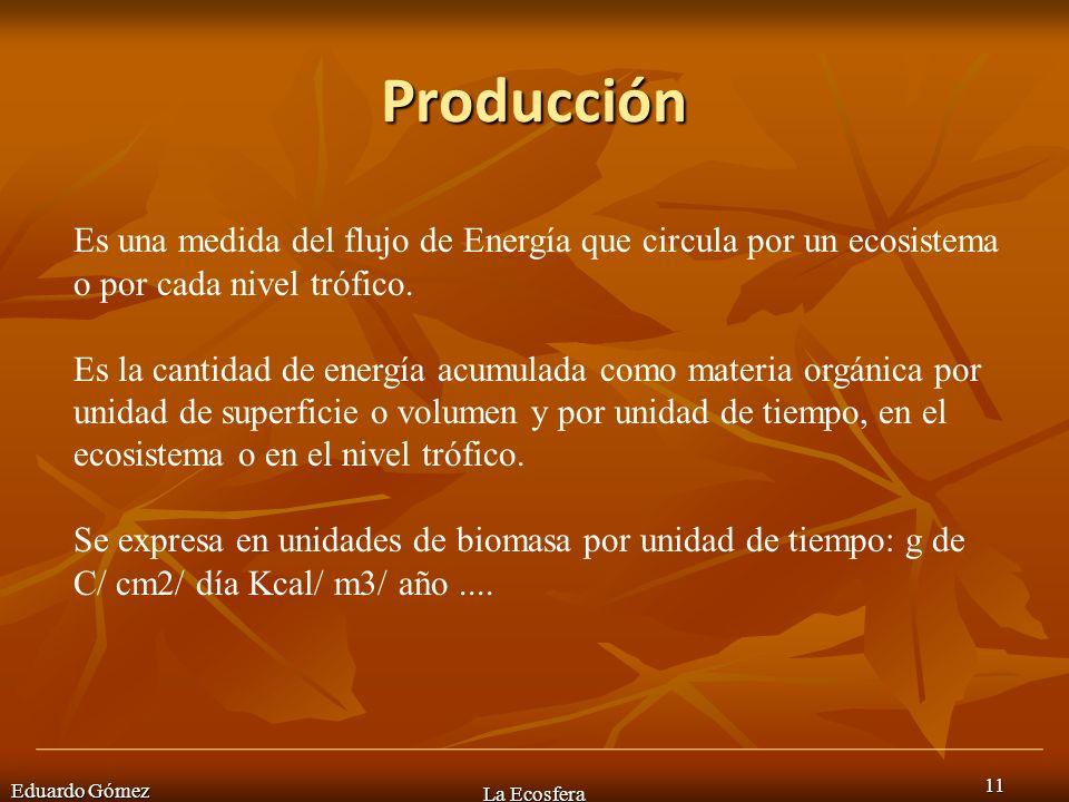 Producción Es una medida del flujo de Energía que circula por un ecosistema o por cada nivel trófico.