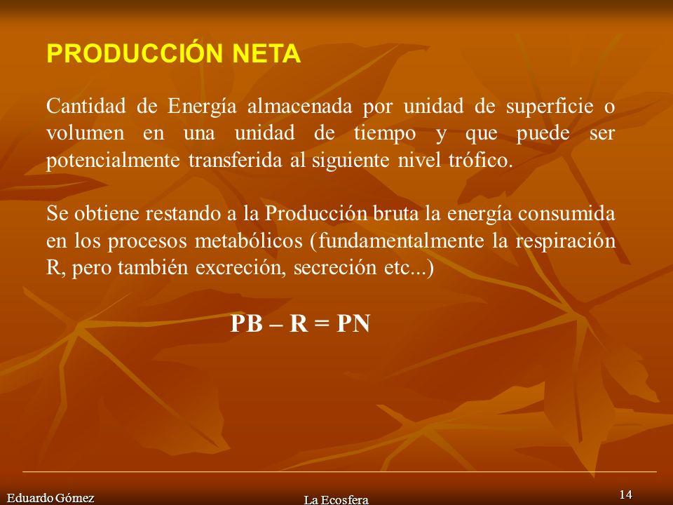 PRODUCCIÓN NETA PB – R = PN
