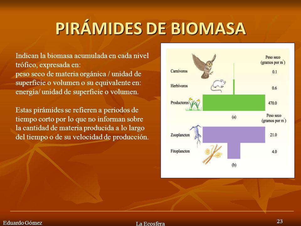 PIRÁMIDES DE BIOMASAIndican la biomasa acumulada en cada nivel trófico, expresada en: