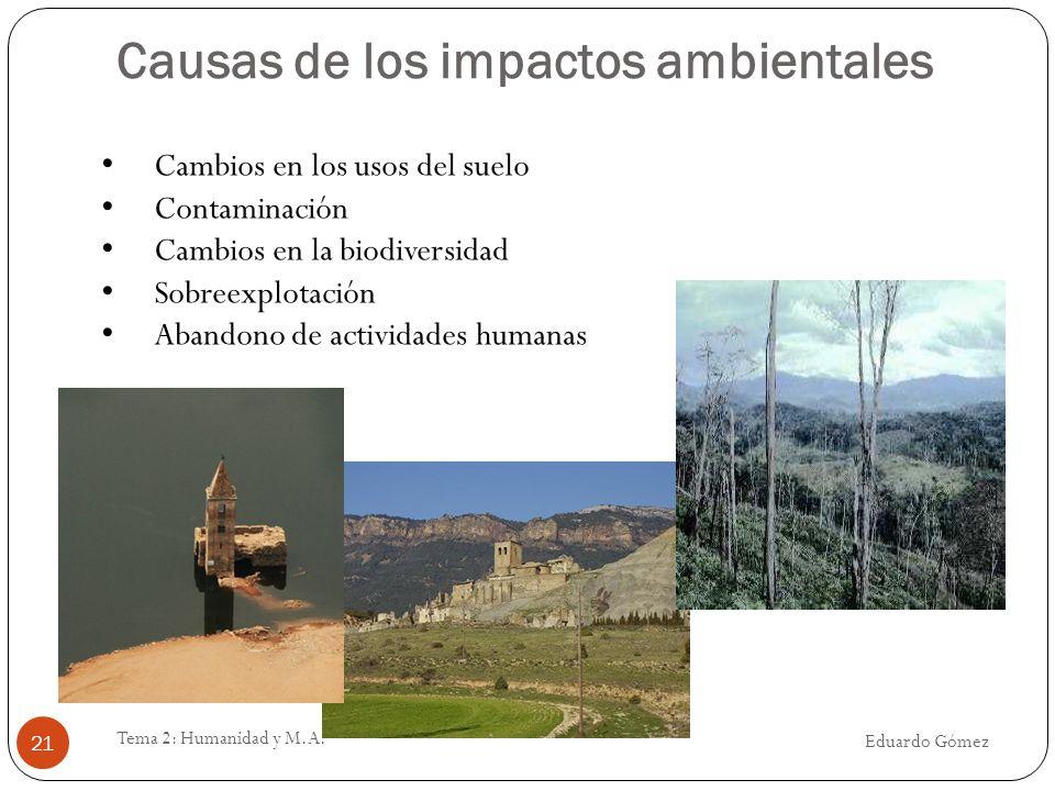 Causas de los impactos ambientales