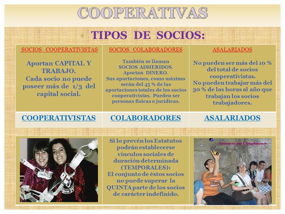COOPERATIVAS TIPOS DE SOCIOS: COOPERATIVISTAS COLABORADORES