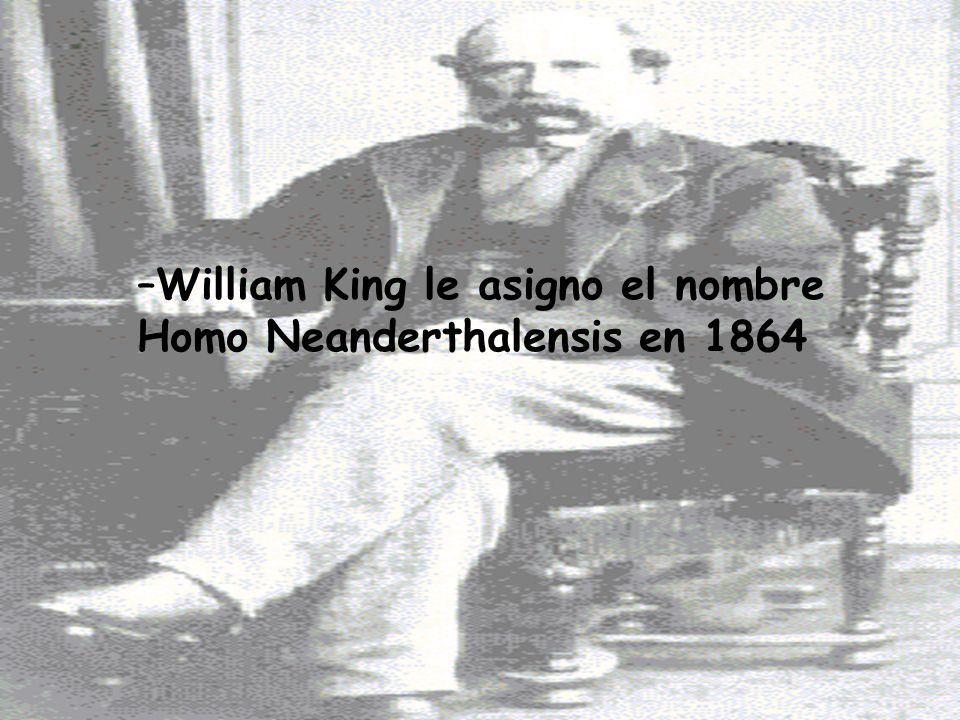 William King le asigno el nombre Homo Neanderthalensis en 1864