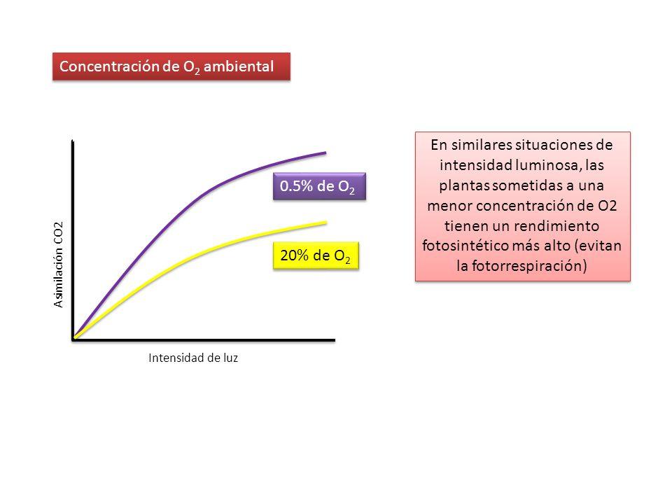 Concentración de O2 ambiental