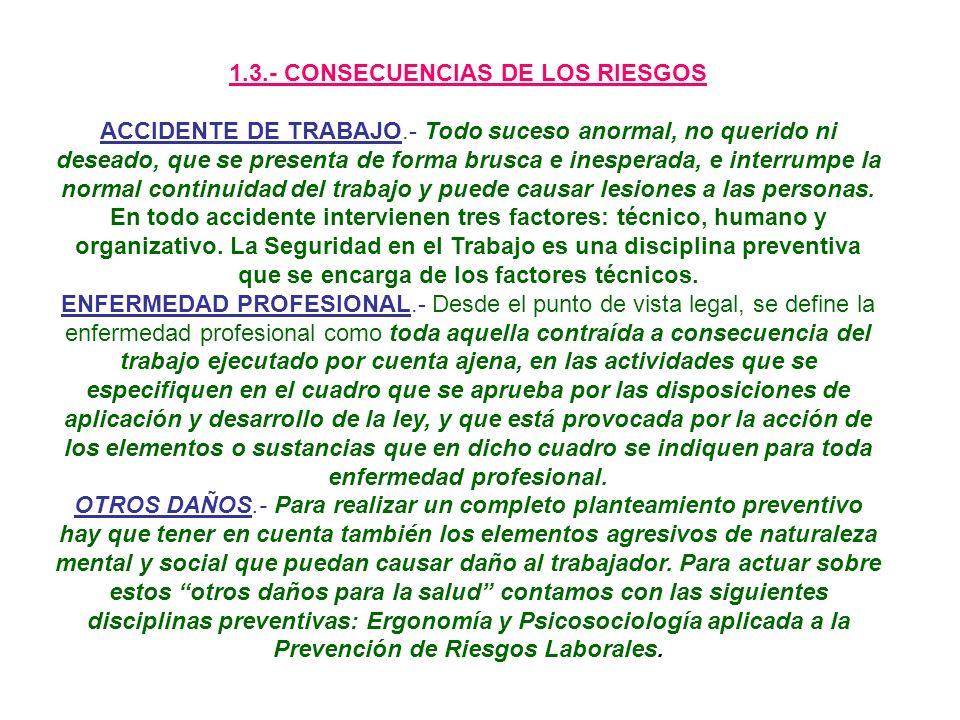 1.3.- CONSECUENCIAS DE LOS RIESGOS