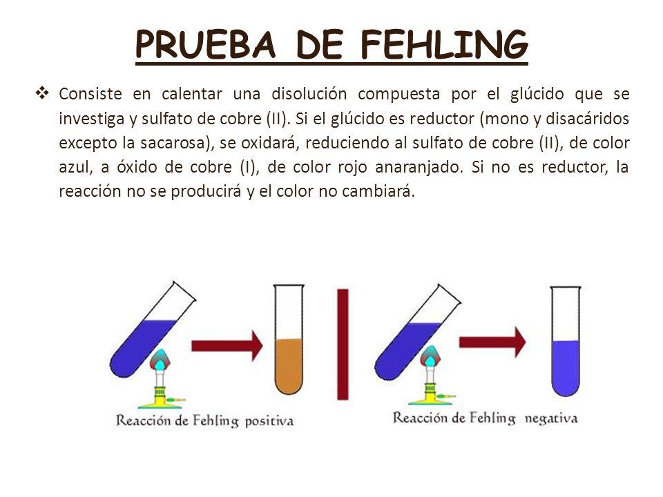 PRUEBA DE FEHLING