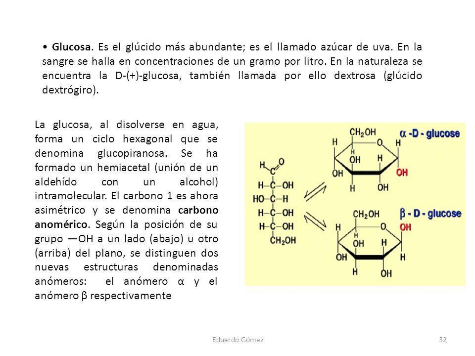 • Glucosa. Es el glúcido más abundante; es el llamado azúcar de uva