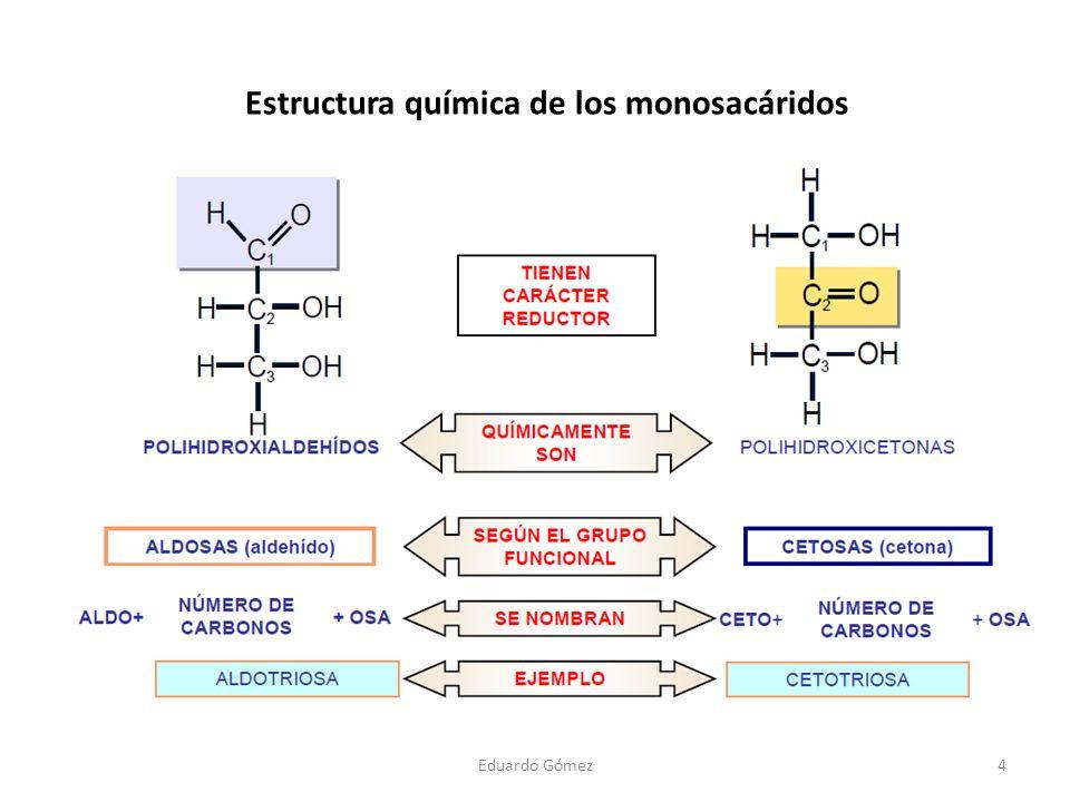 Estructura química de los monosacáridos