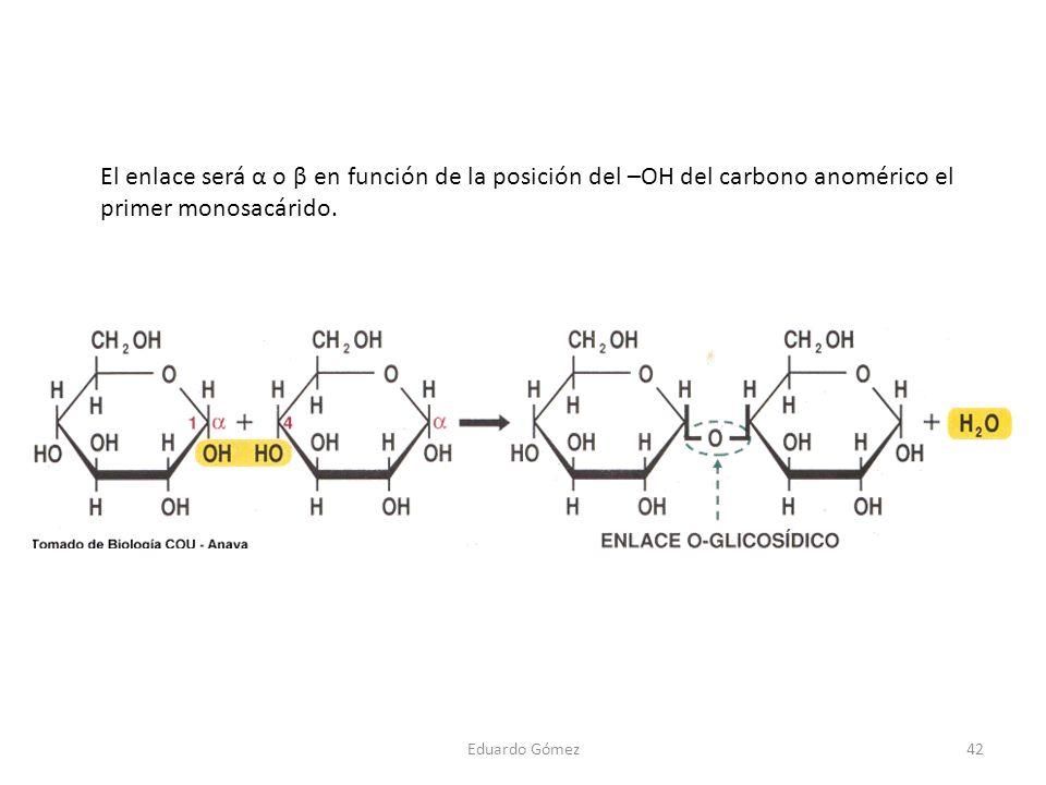El enlace será α o β en función de la posición del –OH del carbono anomérico el primer monosacárido.