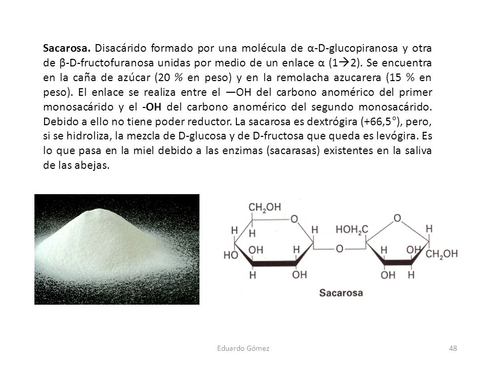 Sacarosa. Disacárido formado por una molécula de α-D-glucopiranosa y otra de β-D-fructofuranosa unidas por medio de un enlace α (12). Se encuentra en la caña de azúcar (20 % en peso) y en la remolacha azucarera (15 % en peso). El enlace se realiza entre el —OH del carbono anomérico del primer monosacárido y el -OH del carbono anomérico del segundo monosacárido. Debido a ello no tiene poder reductor. La sacarosa es dextrógira (+66,5°), pero, si se hidroliza, la mezcla de D-glucosa y de D-fructosa que queda es levógira. Es lo que pasa en la miel debido a las enzimas (sacarasas) existentes en la saliva de las abejas.