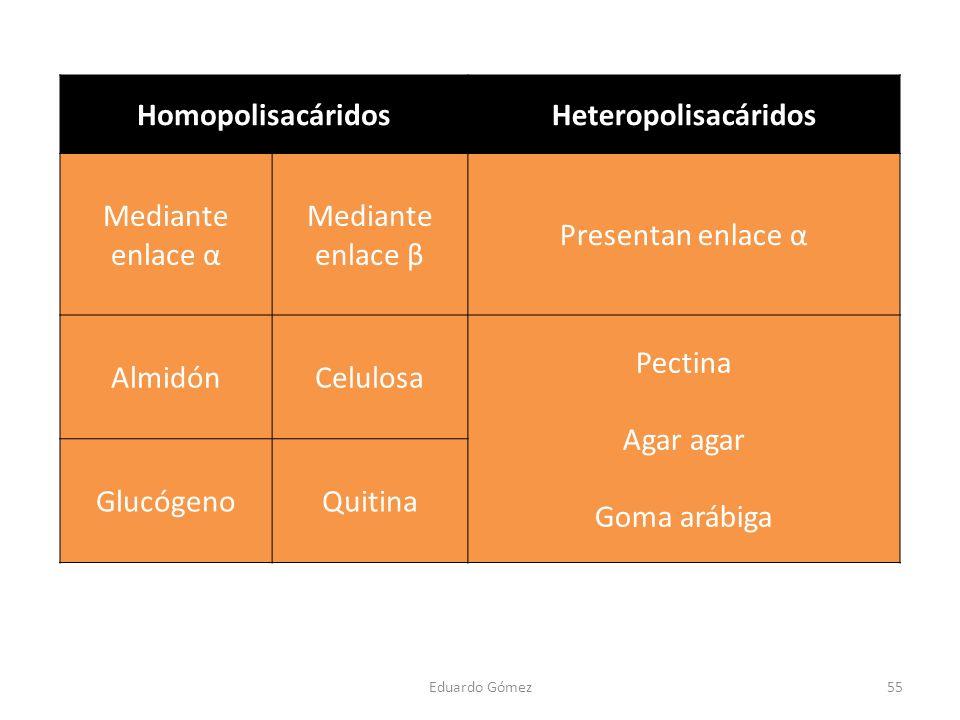 Homopolisacáridos Heteropolisacáridos
