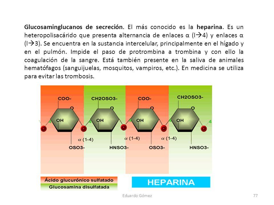 Glucosaminglucanos de secreción. El más conocido es la heparina