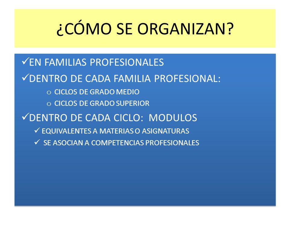 ¿CÓMO SE ORGANIZAN EN FAMILIAS PROFESIONALES
